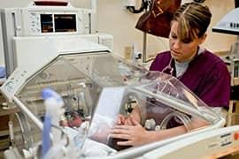Registered Nurse Jobs